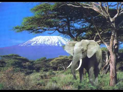 Mozart   Concierto para Clarinete & Oboe   Adagio   Out of Africa soundtrack