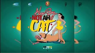 Alma Boy - Not Ah Cat {Grenada} [Soca 2019] Just For Fun Riddim