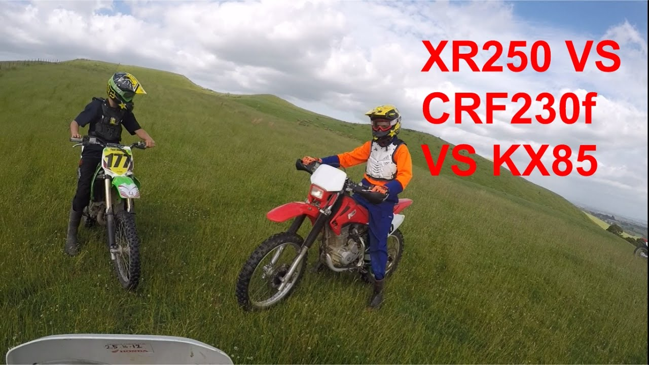 CRF230 VS KX85 VS XR250