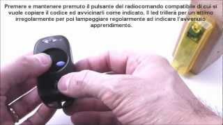 radiocomando rox qc2