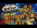 Gambar cover Shadowlands RESTO DRUID Guide Raid & M+ | Gameplay, Legendaries, Talents, DPS & More | WoW
