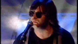 Steve Earle & The V-Roys - Johnny Too Bad (Live)