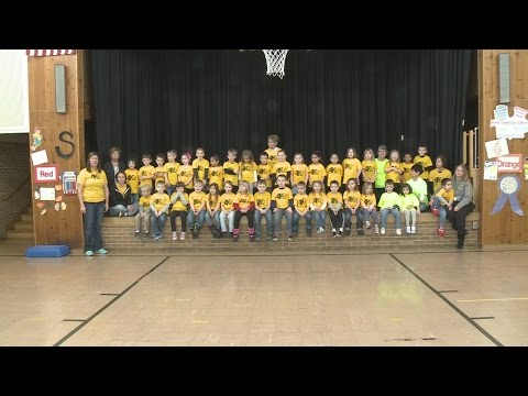 School Shout Out: Meadow View Primary School 5-18