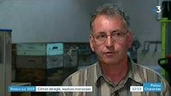 Rétro : la biodiversité en Poitou-Charentes