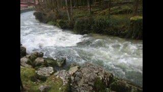 le drouvenant et l'ain rivieres du jura