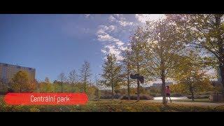 Co všechno se dá dělat v Centrálním parku thumbnail