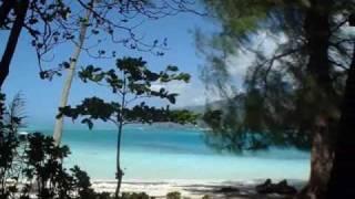 Dans mon Île