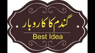 Top Business Idea In Pakistan In Urdu/Hindi    APNA KAROBAR
