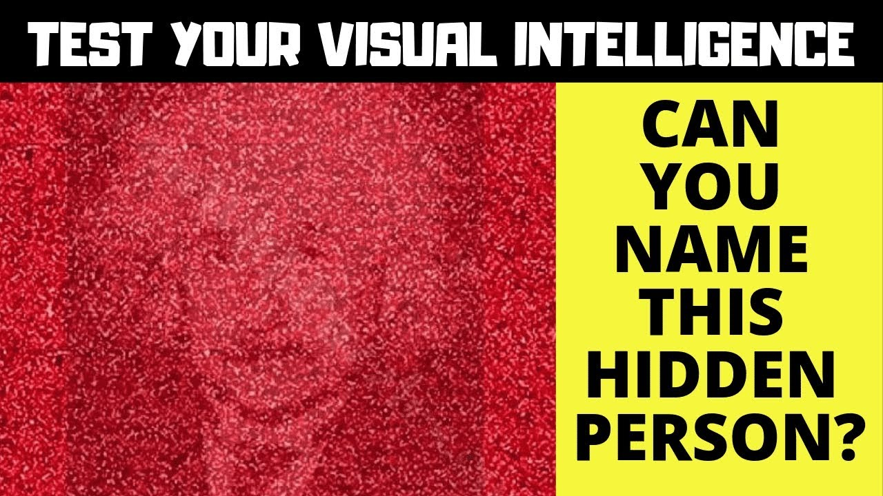 TEST YOUR VISUAL INTELLIGENCE