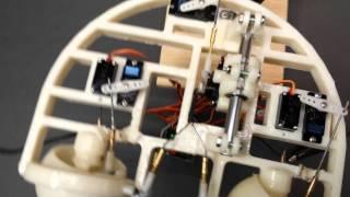 3D printed eye mechanism