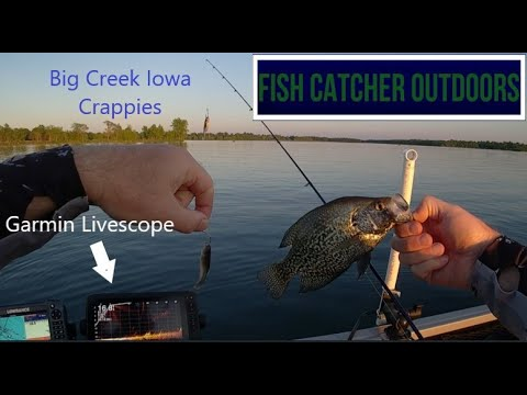 Big Creek Iowa Crappies