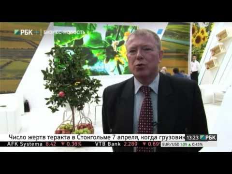 Новости Тольятти информационный портал города