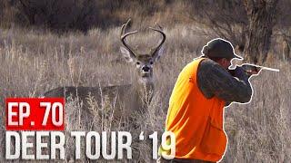 Hunting PUBLIC LAND in the DESERT! - Arizona Bucks and Birds!