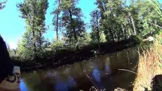 Rzeka pełna szczupaków ;-)