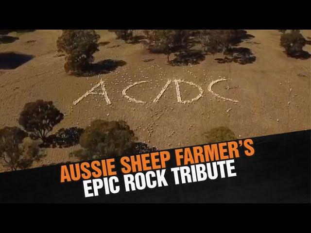 AC/D-Sheep - Aussie Farmer's EPIC Rock Tribute   Triple M