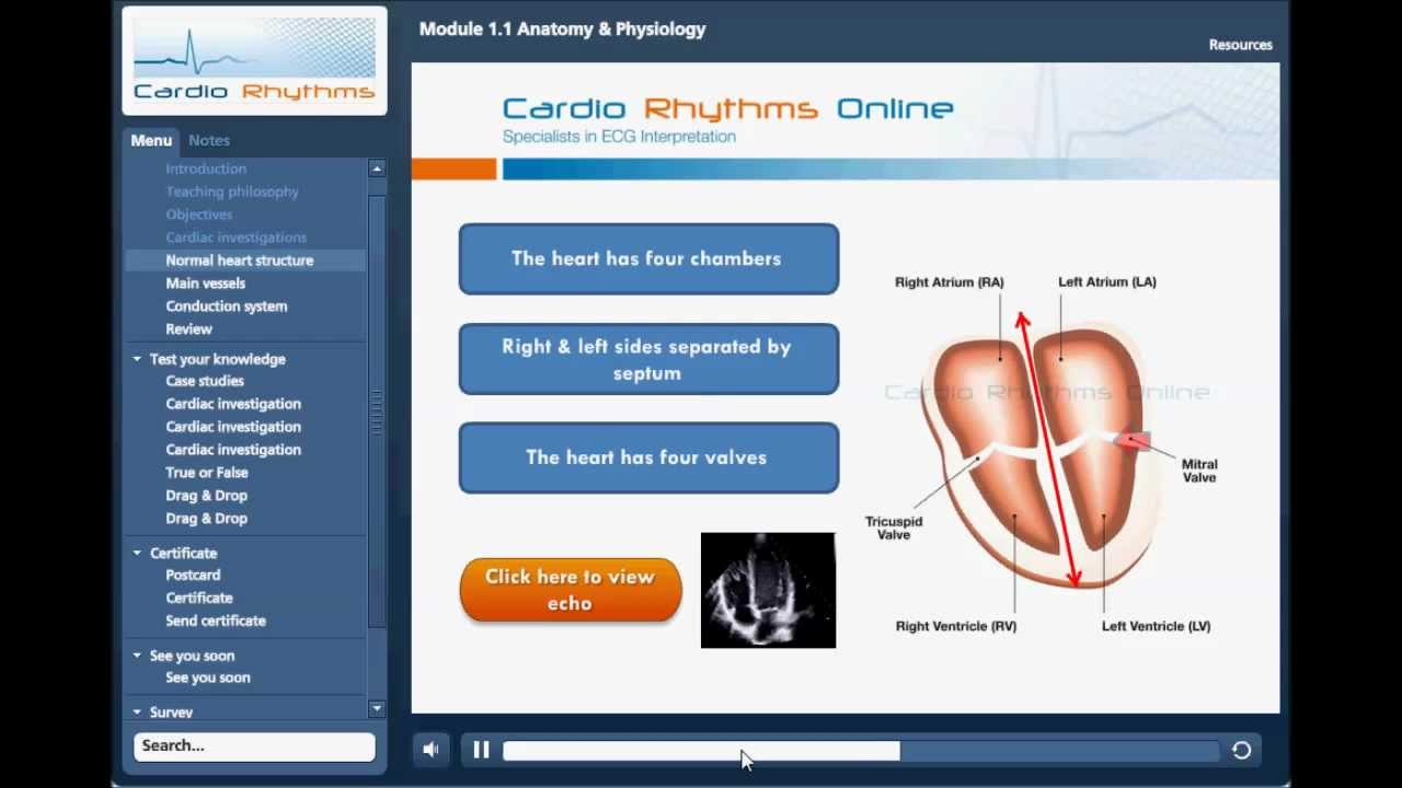 Module 1.1 Cardiology Basics, Anatomy & Physiology. - YouTube