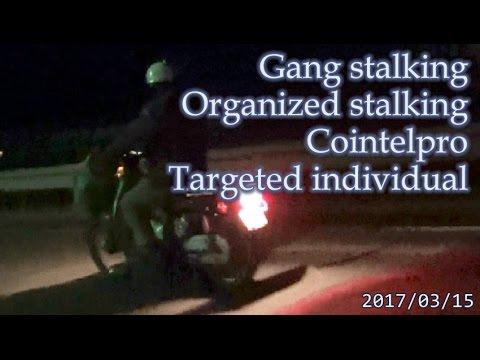 集団ストーキング被害者の記録 2017.03.5 Gang-stalking Organized-stalking Cointelpro Targeted Individuals