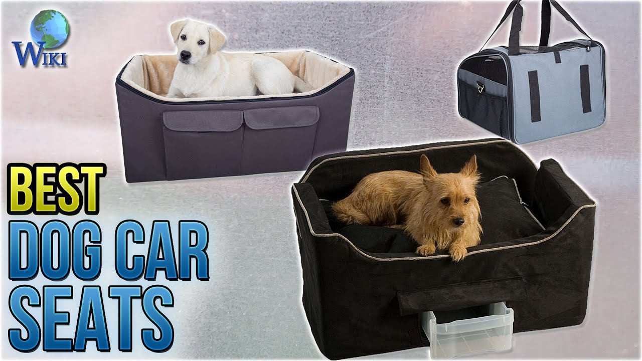 10 Best Dog Car Seats 2018