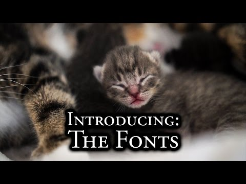 Introducing: The Fonts