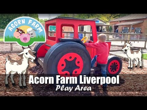 Acorn Farm In Liverpool | Play Area With Tractor & Tubular Bells