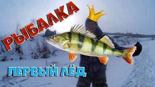 Первая зимняя рыбалка тонкий лёд окунь