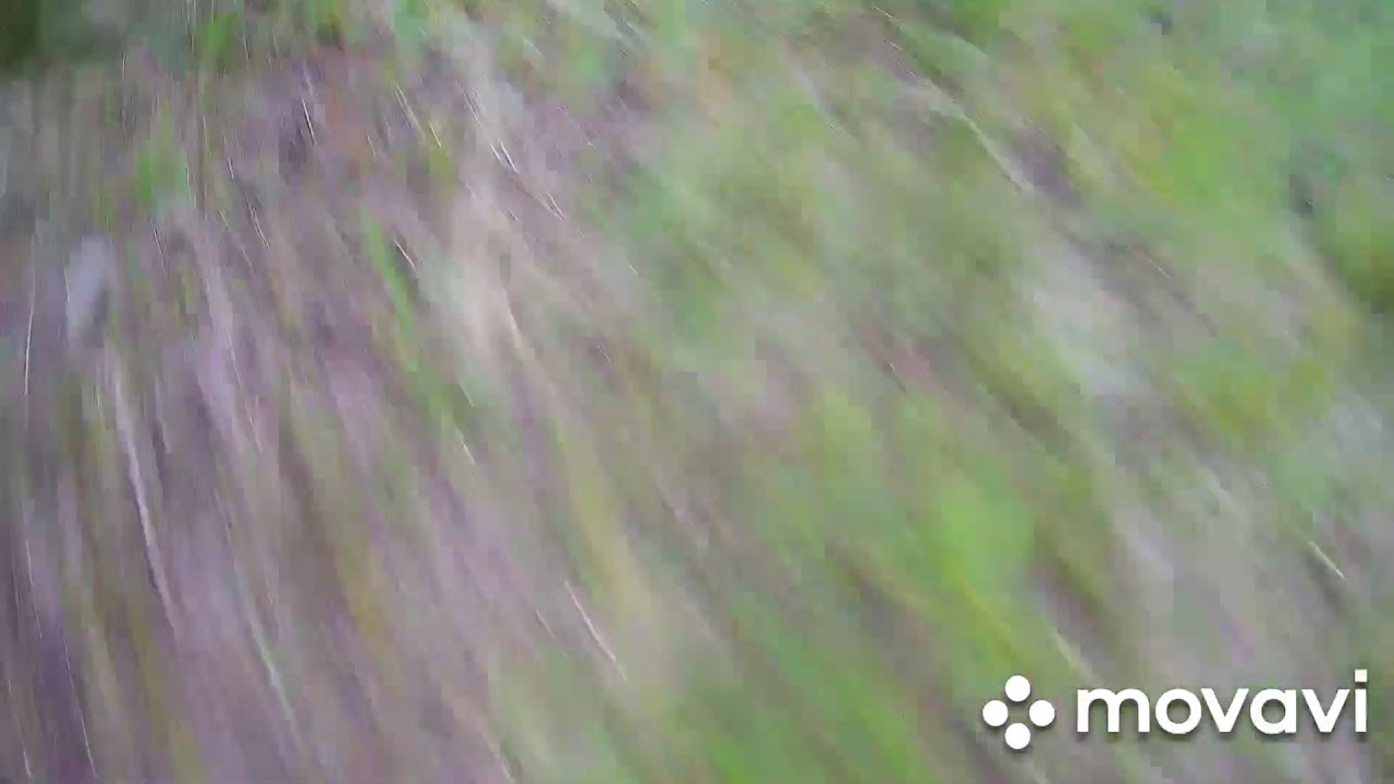 Crash drone Hubsan h 501s/Краш дрона Hubsan h501s фотки