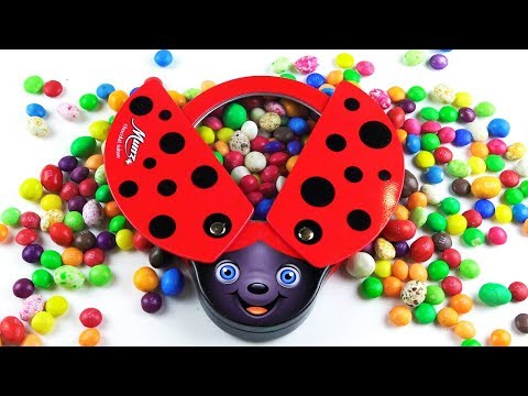 Beetle ate Sweets, sang a Song and Flew Away\Nursery Rhymes \ Kids Song