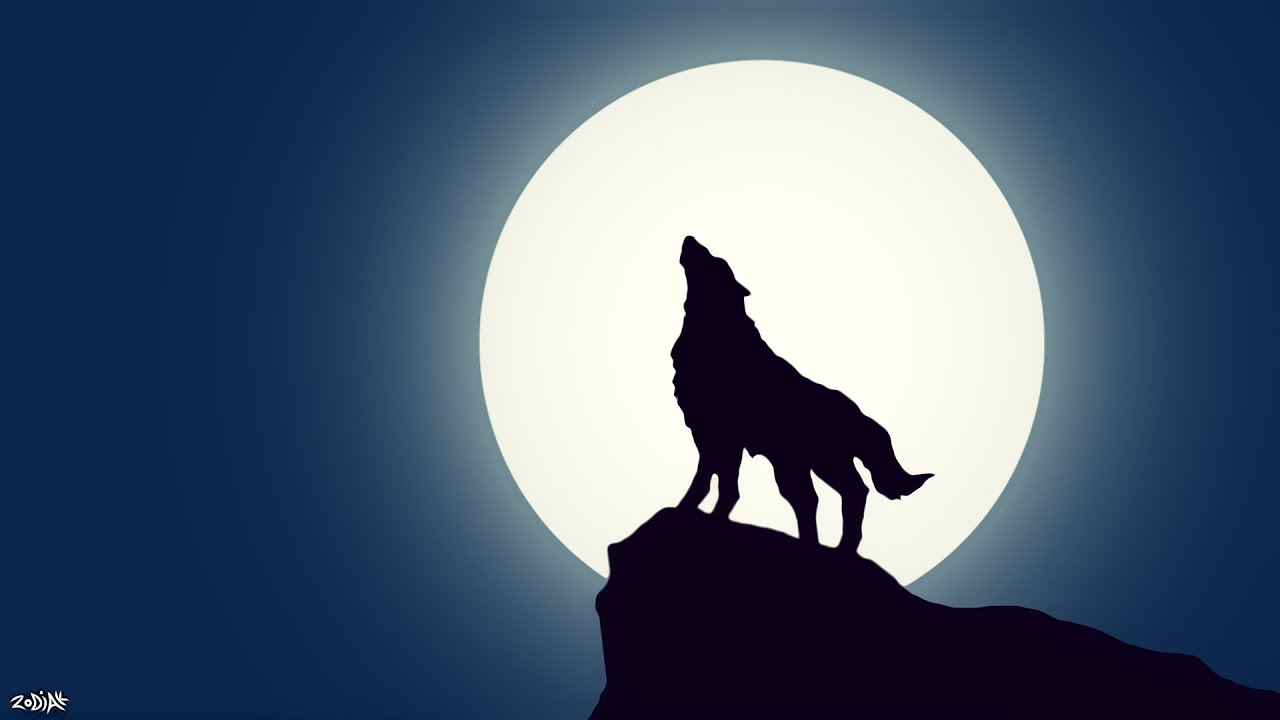 Simple Wolf Wallpaper YouTube