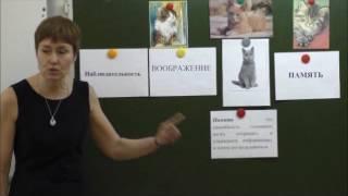 Журавлёва А А