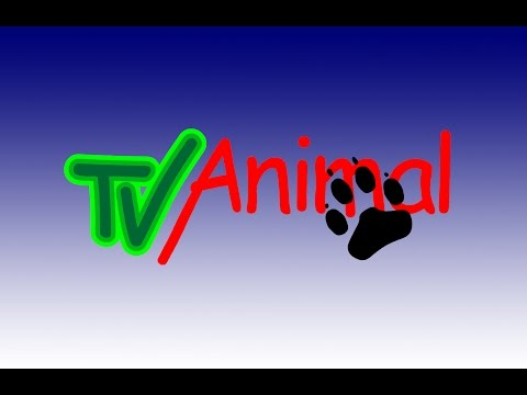 tv-animal-872-completo