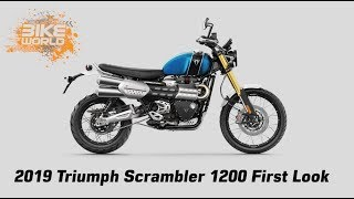 2019 Triumph Scrambler 1200 First Look