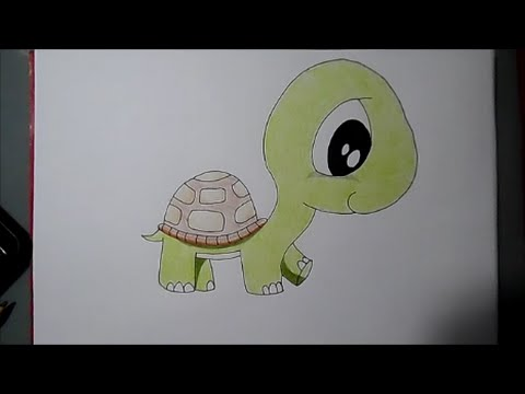 How To Draw Cute Turtle Youtube