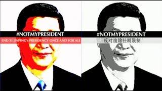 """时事大家谈:""""不是我的国家主席"""",海外的反习声浪"""