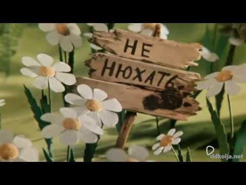 Мультфильм советский разные колеса