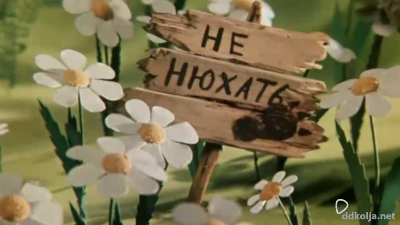 В Україні почала діяти нерестова заборона на вилов риби, - Держрибагентство - Цензор.НЕТ 4128