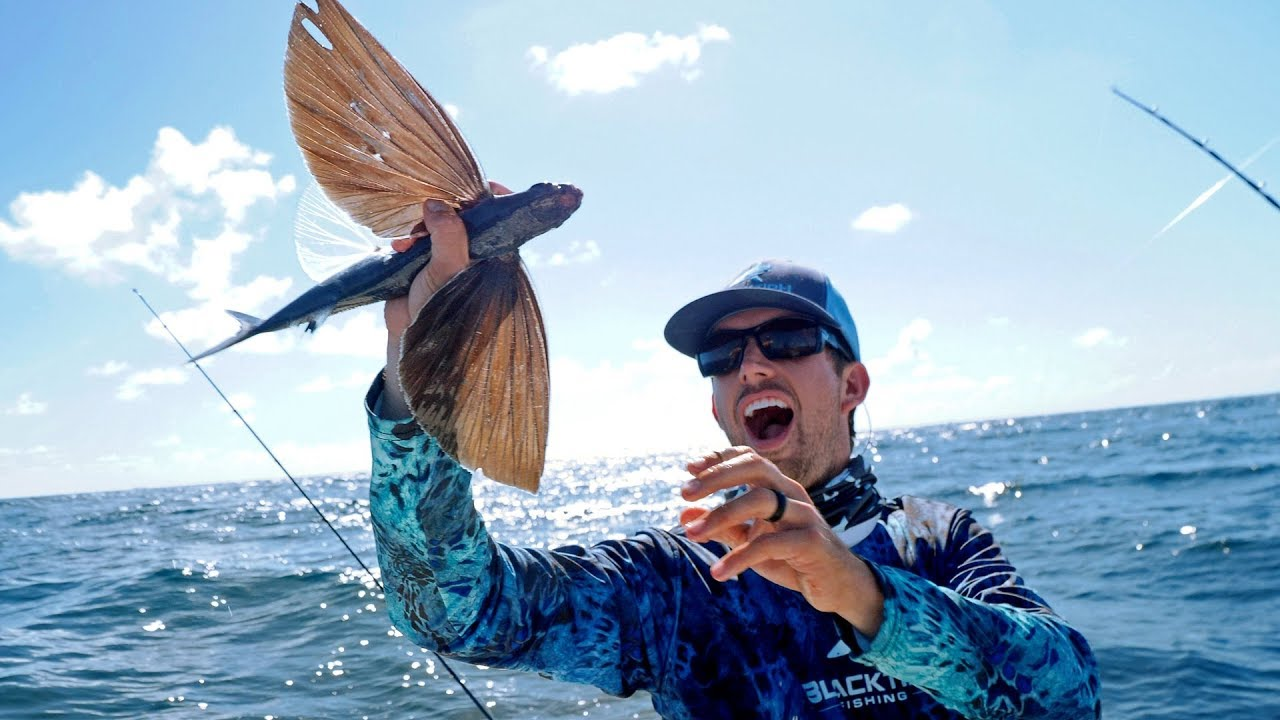 Catching Fish that can Fly!!