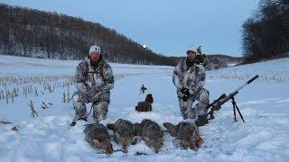 "Coyote Hunting 5 Pack Amazing Footage ""The Quad"""