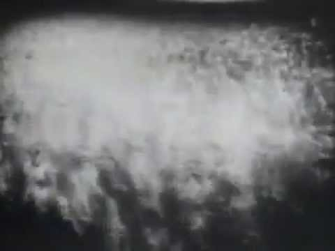 Yippie! Party Video from 1968