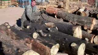 How-to Peel Burnt Logs By Mitchell Dillman