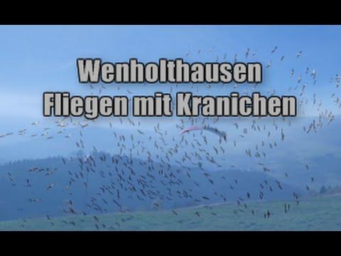 Wenholthausen - Fliegen mit den Kranichen