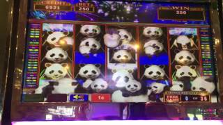 Panda Stacked Feature✦LIVE PLAY w/Bonuses✦ Slot Machine at Flamingo Las Vegas