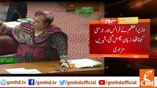 Shireen Mazari clarifies Imran Khan's Japan-Germany border statement