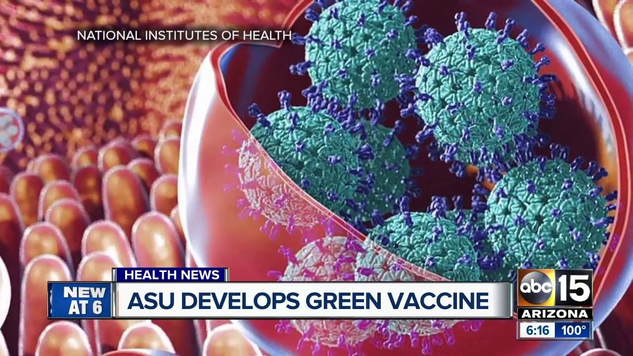 norovirus vaccine schedule