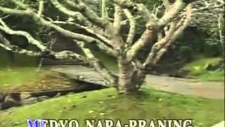 3.Lakas Tama by Siakol VIDEOKE