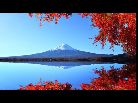 Japan's Best Autumn Spots & Things to do