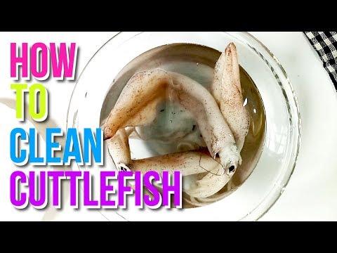 How to Clean Cuttlefish (Squid/Calamari) | Homemade With Yum | Basics