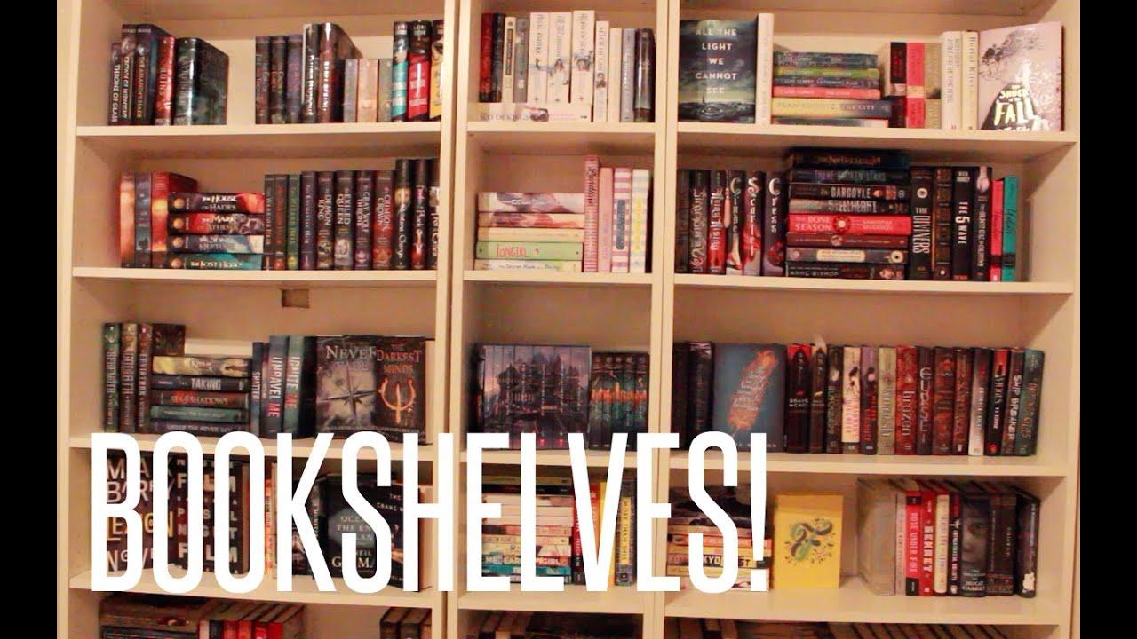 Arranging My New Bookshelves Youtube