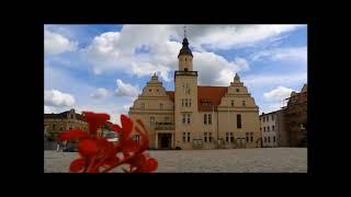 Meine Lieblingsplatz am Elberadweg: Coswig (Anhalt)