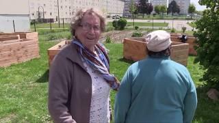 Atelier jardinage au jardin partagé avec les séniors.