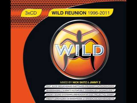 Wild Reunion 1996 To 2011 Panjabi MC ft. Jay-Z-Mundian To Bach Ke